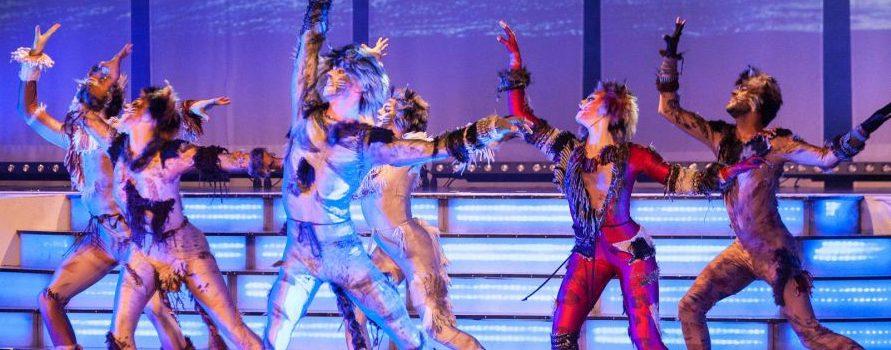 """""""Cats"""", """"Elisabeth"""" & """"Tanz der Vampire"""": Musical-Gala am 5. Februar in der Wiener Stadthalle"""